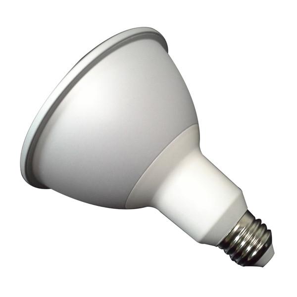 Tesla - PA381660-1 LED PAR38 E27 16W 6000K